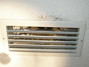 mold growth around an air vent