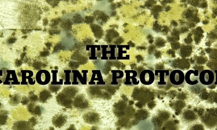 mold with the words the carolina protocol