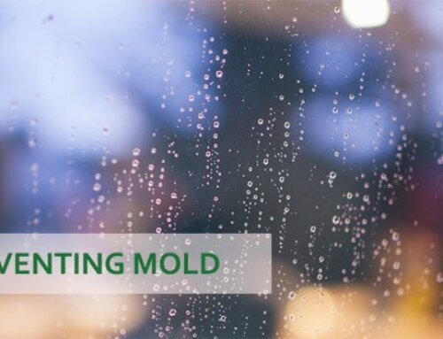 9 Tips for Preventing Mold